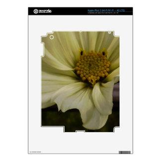 Rustic Flower iPad 3 Skin