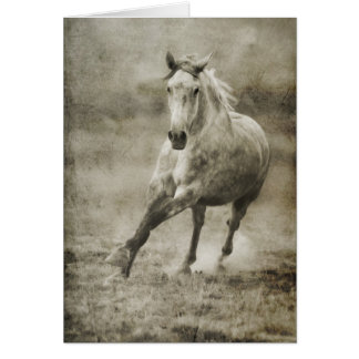 Rustic Galloping Andalusian Horse Card