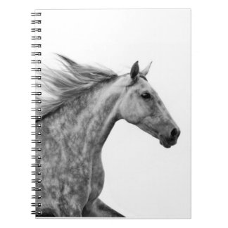 Rustic Galloping Andalusian Horse Notebook
