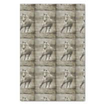 Rustic Galloping Andalusian Horse Tissue Paper
