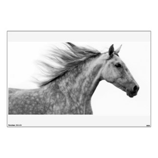 Rustic Galloping Andalusian Horse Wall Decal