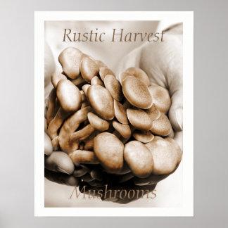 Rustic Harvest Mushrooms Photograph Poster