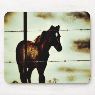 Rustic Horse Colt Foal and Barbed Wire Mouse Pad