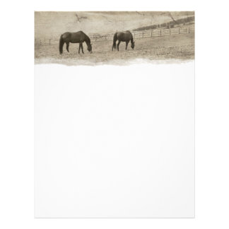 Rustic Horse Farm Flyer
