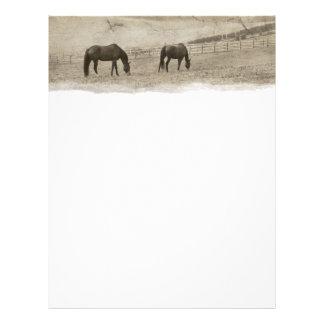 Rustic Horse Farm Flyer Design