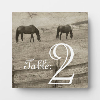 Rustic Horse Farm Table Number Plaque