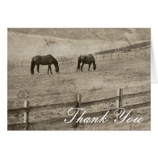 Rustic Horse Farm Thank You Card