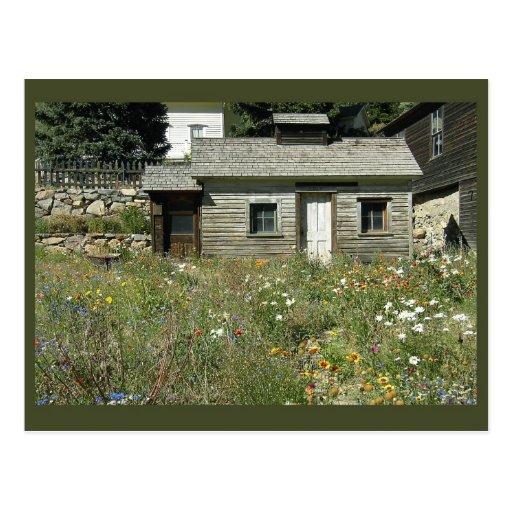 Rustic House in Wildflowers Postcard