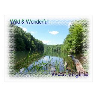 Rustic Lake in Appalachia Postcard
