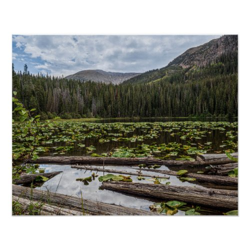 Rustic Lake // Lilly Pond Green Leaves