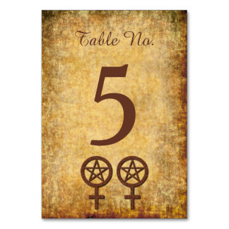 Rustic Lesbian Handfasting Reception Table Number Card