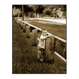 Rustic little boy at the fence postcard