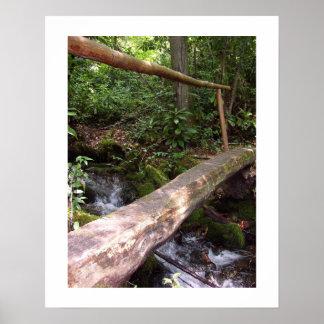 Rustic Log Bridge Poster