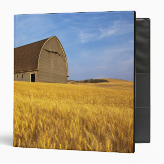 Rustic old barn in mature wheat field in the 2 binder