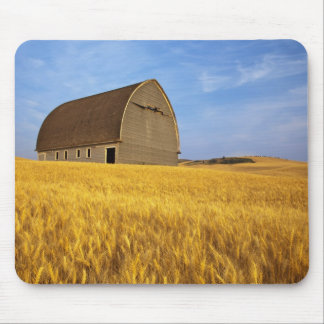 Rustic old barn in mature wheat field in the 2 mouse pad