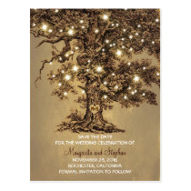 rustic old oak tree lights save the date postcards