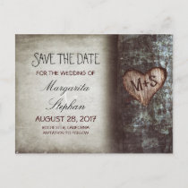rustic old tree save the date postcards