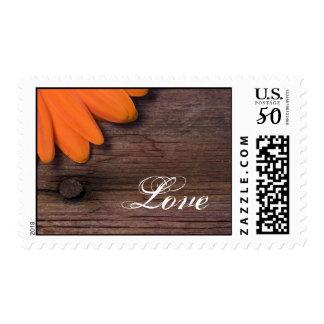 Rustic Orange Daisy and Barn Wood Wedding Love Postage