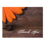 Rustic Orange Daisy Country Thank You Postcard