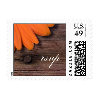 Rustic Orange Daisy Country Wedding RSVP Stamp