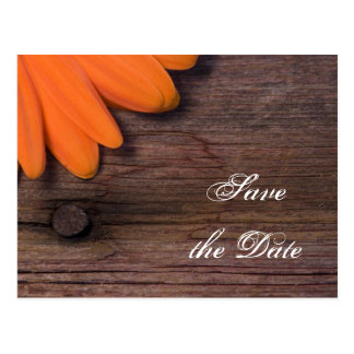 Rustic Orange Daisy Country Wedding Save the Date Postcards