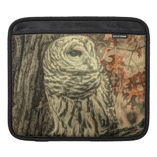 Rustic Owl In Tree iPad Sleeves