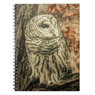 Rustic Owl In Tree Notebook