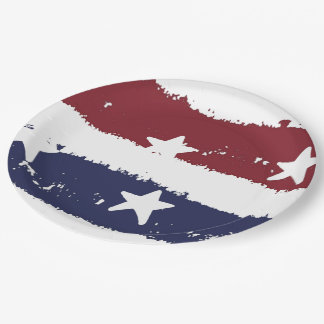 Rustic Paint Stars and Stripes Paper Plates