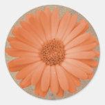 Rustic Peach Daisy Flower Round Stickers Seals