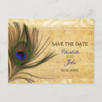 Rustic Peacock Feather wedding save the date Announcement Postcard