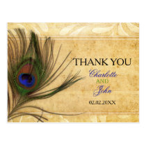 Rustic Peacock Feather wedding Thank You Postcard