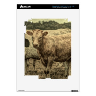 Rustic picture of cow in field skin for iPad 3