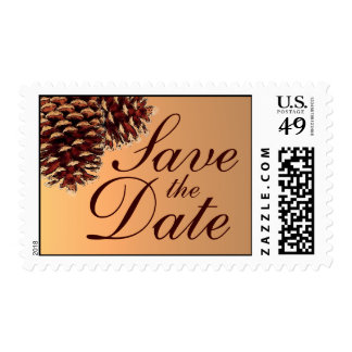 Rustic pinecone autumn custom postage stamps