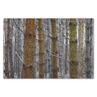 """Rustic Pines 10"""" X 15"""" Tissue Paper"""