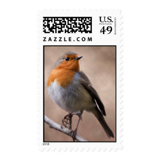 Rustic Robin Postage