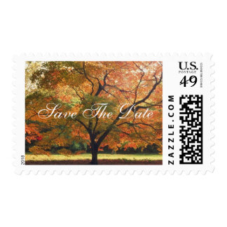 Rustic Save The Date Fall Wedding Invitation Postage