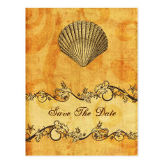 rustic seashell  beach wedding save the date post cards