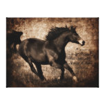 Rustic Sepia Galloping Horse Stretched Canvas Print