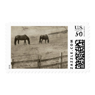 Rustic Sepia Galloping Horse Postage