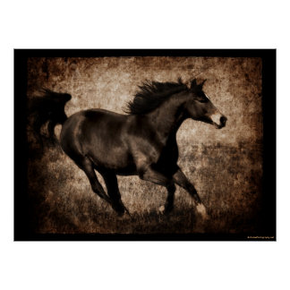 Rustic Sepia Galloping Horse Poster