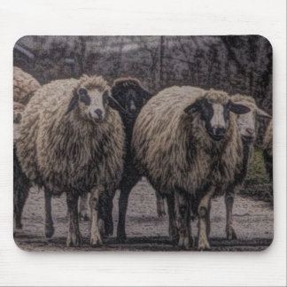 Rustic sheep on road mouse pad