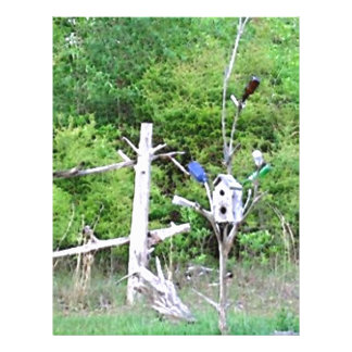 Rustic Southern Bottle Tree Knotted Pine Birdhouse Full Color Flyer