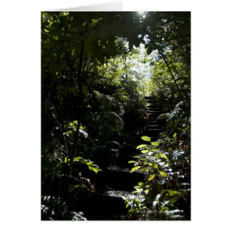 Rustic staircase/footpath in forest, sunlight card
