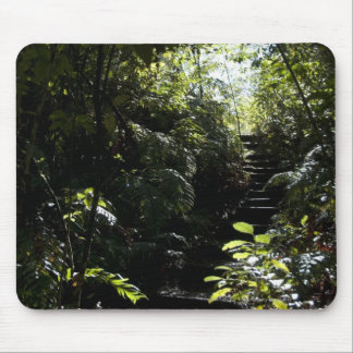 Rustic staircase/footpath in forest, sunlight mouse pad