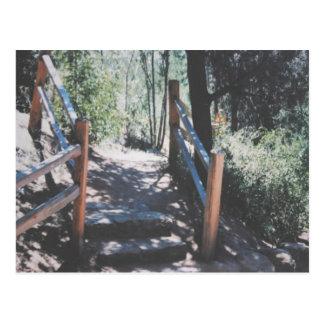 Rustic Steps And Railings Postcard