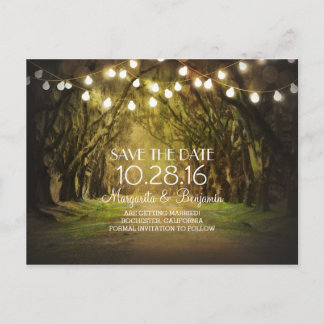Rustic String Lights Tree Path Save the Date Announcement Postcard