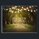 "Rustic String Lights Tree Path Save the Date Postcard<br><div class=""desc"">Rustic vintage save the date postcards with old Spanish moss trees and string of lights.</div>"