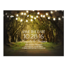 Rustic String Lights Tree Path Save The Date Postcard at Zazzle