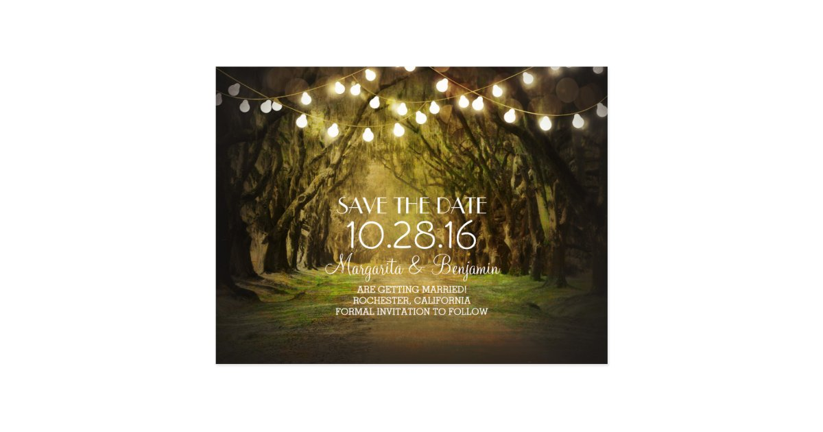 String Lights Rustic Tree : Rustic String Lights Tree Path Save the Date Postcard Zazzle
