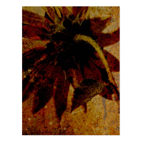 Rustic Sunflower Postcard